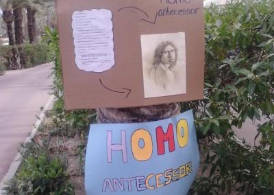 PC-evolución humana-1ºBAT-Colegio Santa María