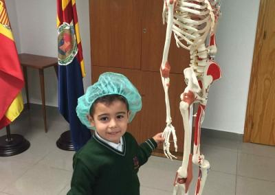 Descubro el cuerpo humano- Colegio Santa María