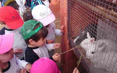 """Los alumnos de infantil visitamos la granja escuela """"La loma"""""""